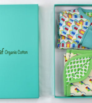 Baby gift set box with babygrow and blanket by Little Leaf Organics