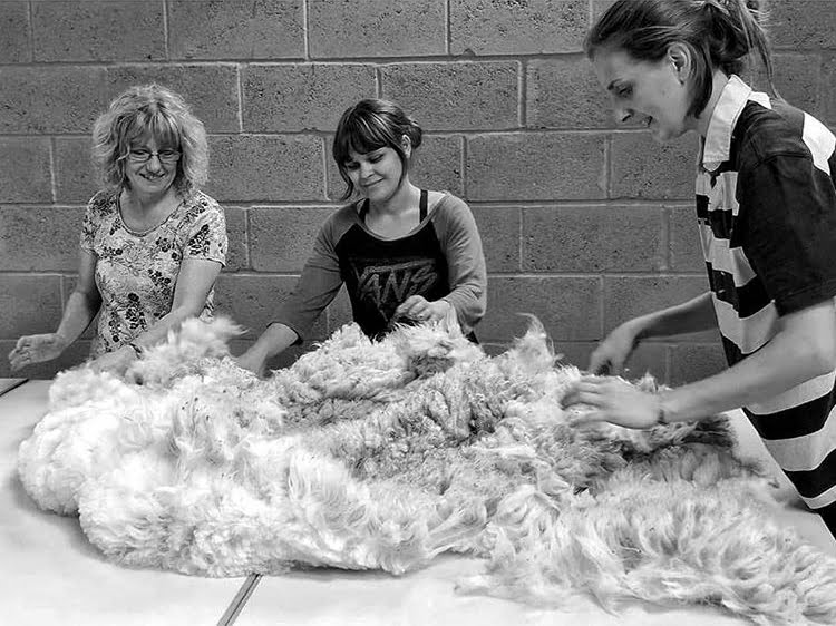 After the shearing process at Ted & Bessie maker of the month at Nurture Collective Ethical - Baby Clothing