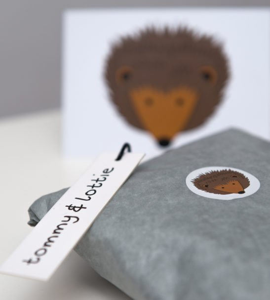 Hedgehog T-Shirt & Harems Packaged Gift Set by Tommy & Lottie at Nurture Collective