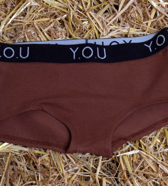 Women Branded Boy Shorts Chestnut Pack by YOU Underwear at Nurture Collective