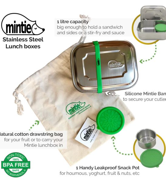 Mintie Duo Stainless Steel Lunchbox Set Info Graphic by Environmental Life at Nurture Collective