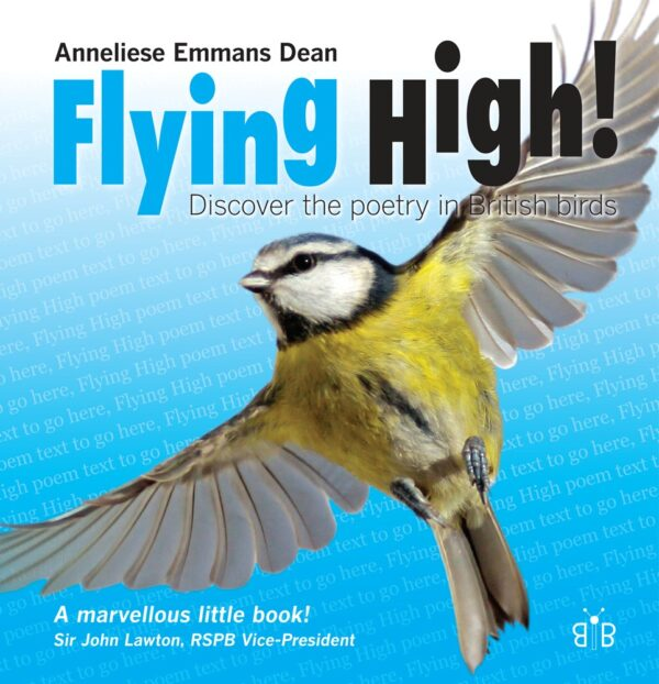 Flying High! Discover the poetry in British birds by Anneliese Emmans Dean at Nurture Collective