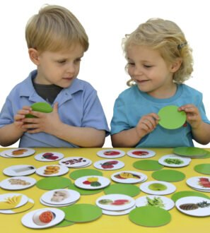Matching Pairs Memory Game - Healthy Foods by Educational Advantage at Nurture Collective