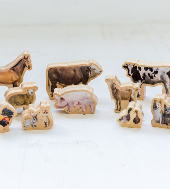 My Farm Animals wooden animals by Educational Advantage at Nurture Collective