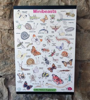 Minibeast poster by Emma Lawrence at Nurture Collective